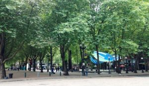 Occidental Park in Pioneer Square